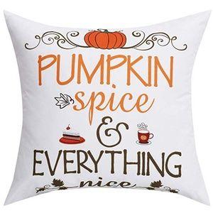 """⭐NEW⭐ - """"Pumpkin Spice &..."""" Pillow - 18X18"""